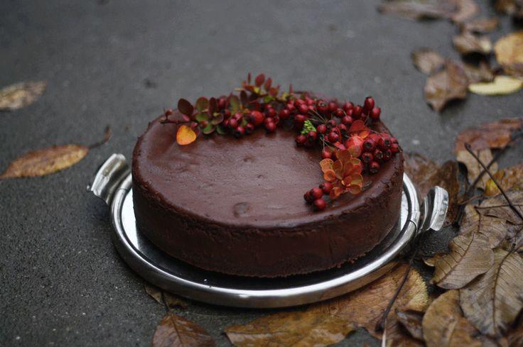 Maminka si navíkend poručila čokoládový cheesecake ajá, jako správná dcera, jsem přeci nemohla odmítnout. Cheesecake semi povedl krásně krémový avšichni sejenoblizovali.