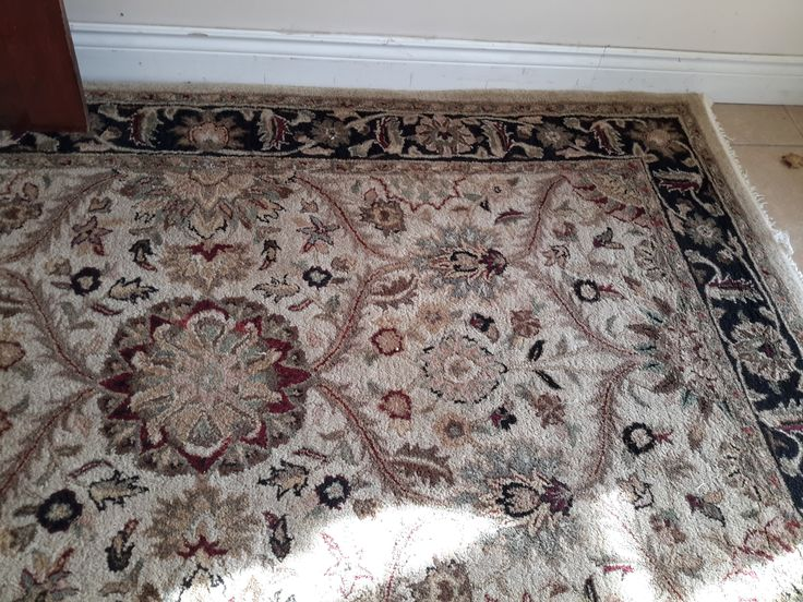 100% Wool Rug 5′ x 8′   The Millionaire's Daughter