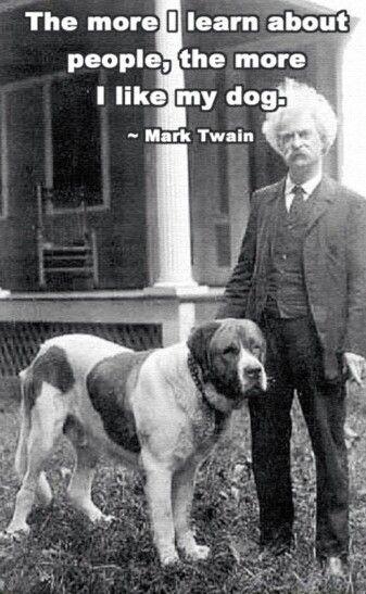 top veterinary technician schools