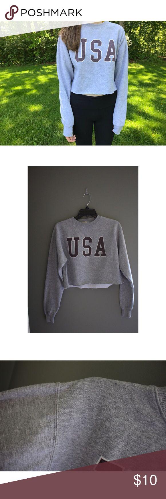 "ᴘᴀᴄsᴜɴ USA Cozy Cropped Sweatshirt 🇺🇸 ʙʀᴀɴᴅ- John Galt  ᴄᴏɴᴅɪᴛɪᴏɴ- Used, two small black dot stains near left shoulder ᴍᴀᴛᴇʀɪᴀʟ- 70% cotton, 30% polyester ʙᴇsᴛ ғɪᴛ- One size! 💫don'т вe aғraιd тo oғғer 💫no тradeѕ Model is 5'9"" and wears a size small Thanks for shopping with me! 🐈 PacSun Sweaters Crew & Scoop Necks"
