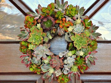 Living Succulent Wreath by Cactus Limon contemporary-wreaths-and-garlands
