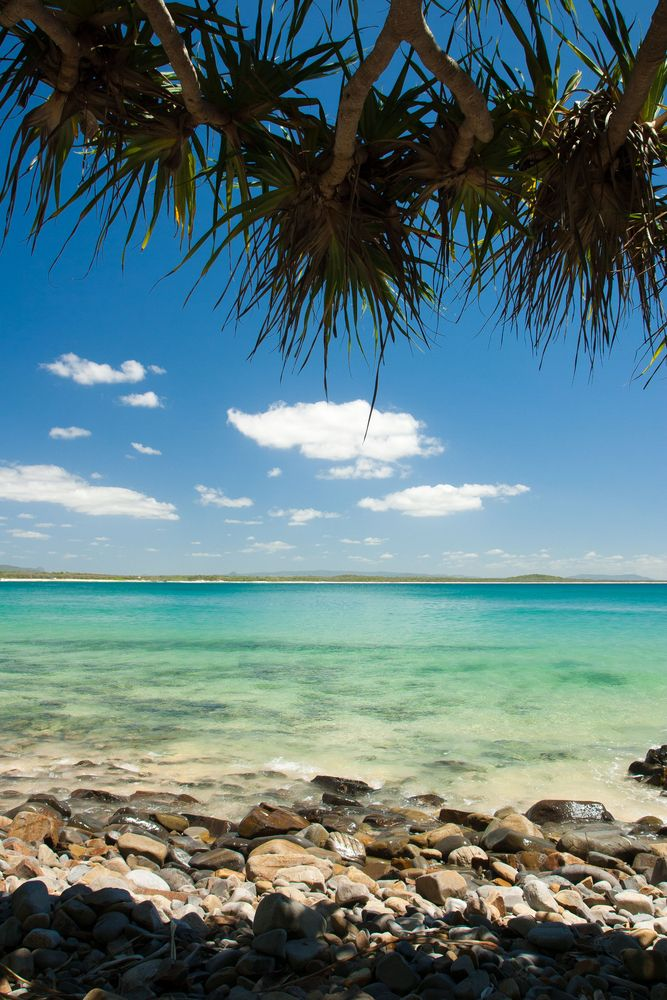 Picture perfect Noosa Beach .. Soon!!