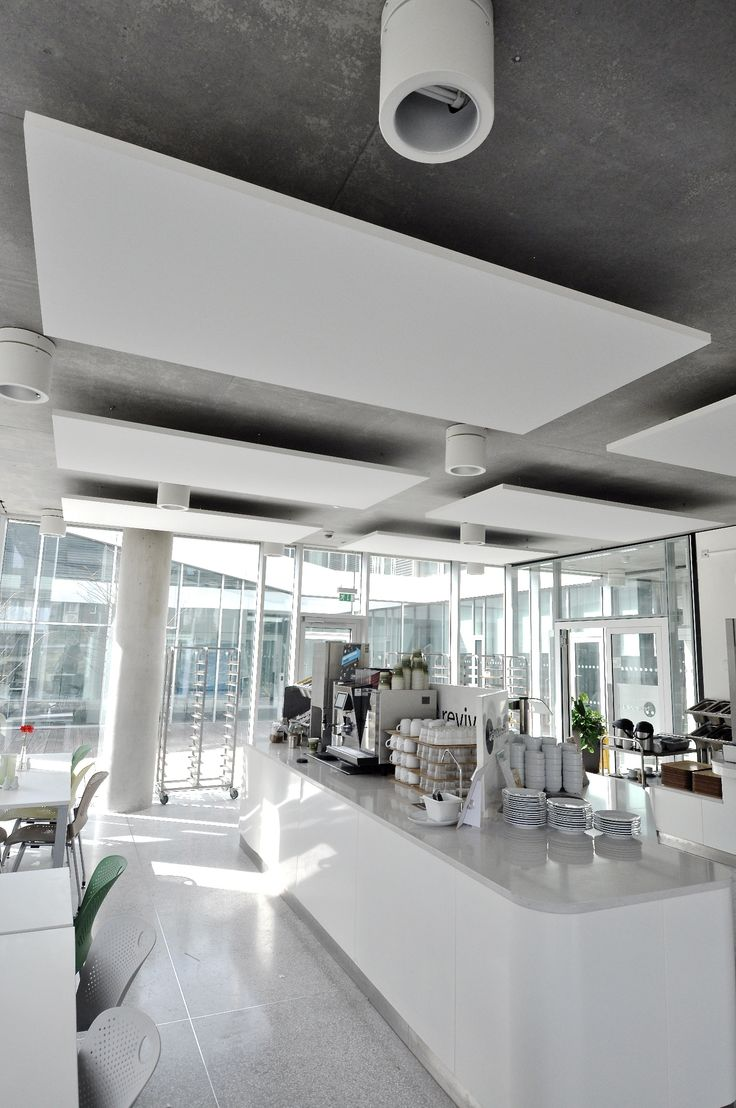 Best 25 acoustic ceiling panels ideas on pinterest ceiling box one contained some acoustic ceiling systems from ecophon ecophon doublecrazyfo Choice Image