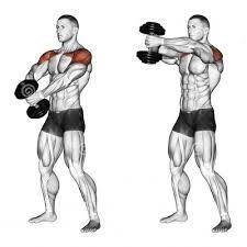 Resultado de imagen de shoulder training (Fitness Routine Gym)