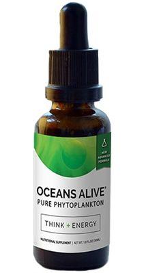Oceans Alive - supernäring i form av plankton