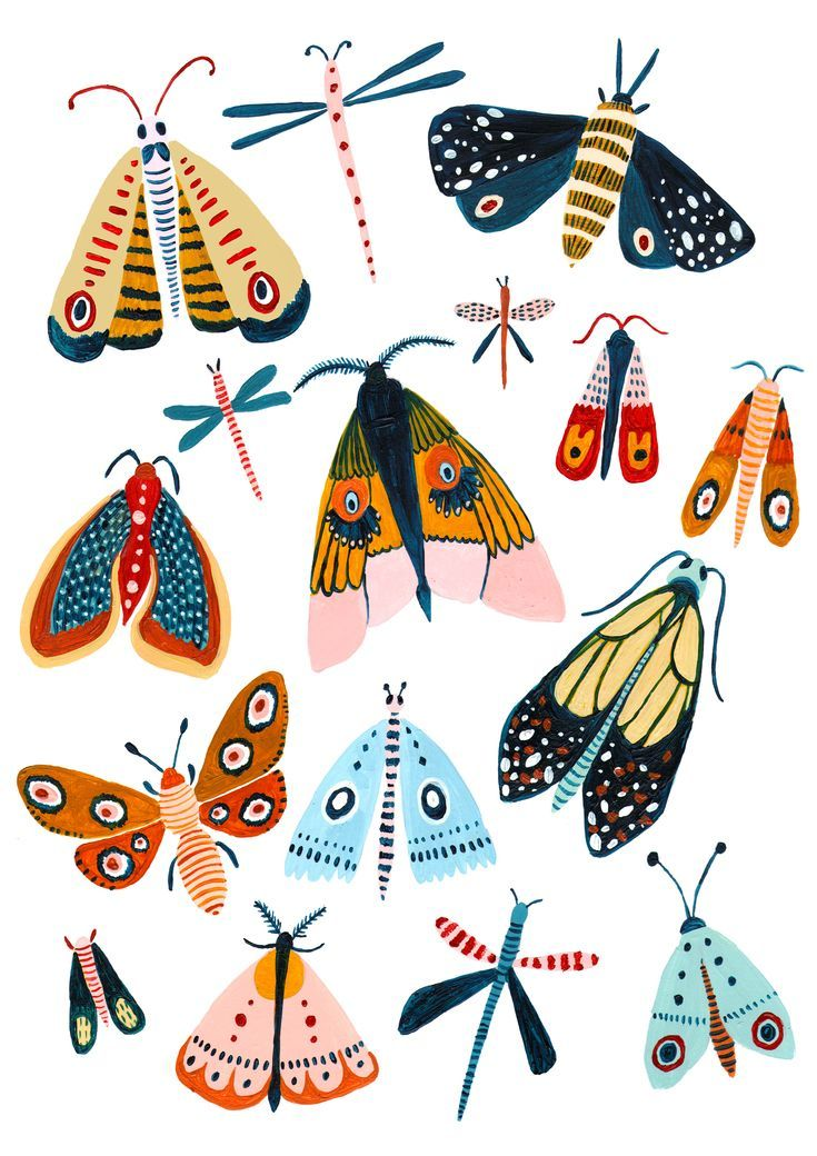 The Design – A playful Woodland design with the best moth species. – T