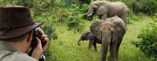 Special Interest Safari - Photographic Safari in Zambia