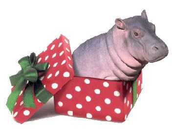27 best I want a Hippopotamus for Christmas images on Pinterest ...