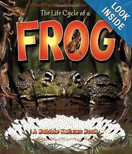 The Life Cycle of a Frog: Bobbie Kalman, Kathryn Smithyman: 9780778706816: Amazon.com: Books