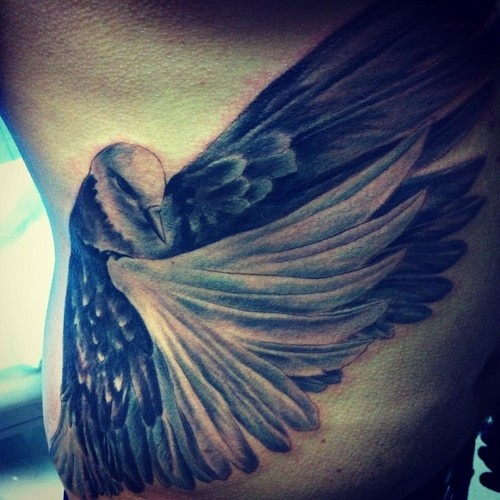 My third tattoo - pigeon. I done in Moscow without any idea just in love with the wings