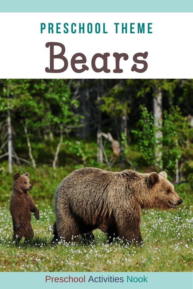 Preschool Bears Theme Preschool Activities Nook Bear Activities Preschool Bear Theme Preschool Bears Preschool