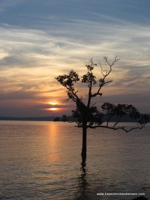 A full day trip to the enjoy the amazing beauty of the islands, Ross Island and Chidiatapu. - See more at: https://trip.experienceandamans.com/trip/ross-island-and-chidiatapu-sunset.html#sthash.d1NBnSpz.dpuf