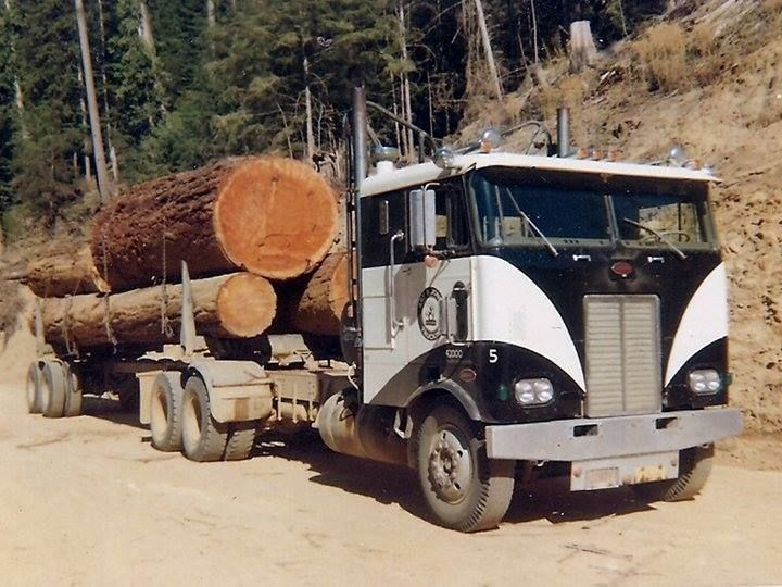 1000+ images about Log trucks on Pinterest | Peterbilt ...
