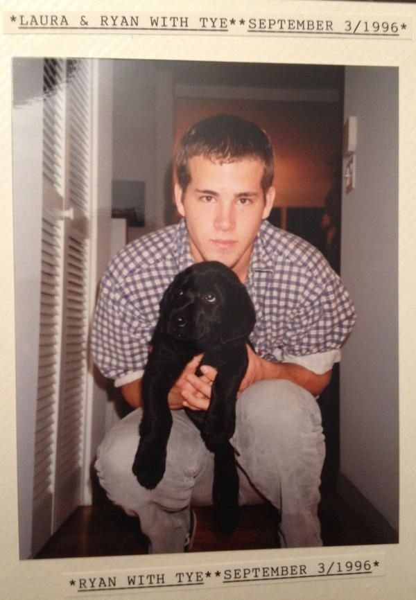 A Brief Timeline Of Ryan Reynolds With Dogs - Holy chimichangas, he was such a cutie! The dog, and Ryan.