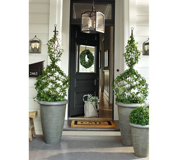 Charming Topiary Decorating Ideas Part - 4: Plant Topiary Idea For Front Porch Or Indoors - Can Be Done With Ivy