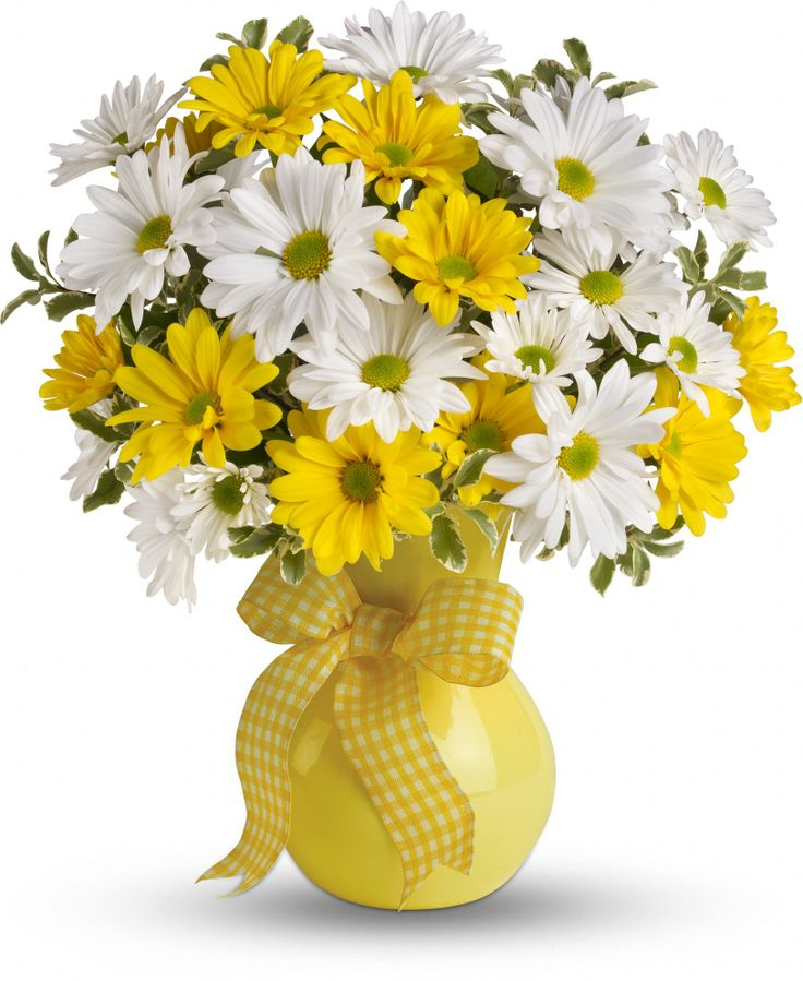 Teleflora's Upsy Daisy  What could be sweeter than a cheerful yellow vase filled with white and yellow daisies? Can't think of anything? Then choose this sunny bouquet. It will brighten their day.