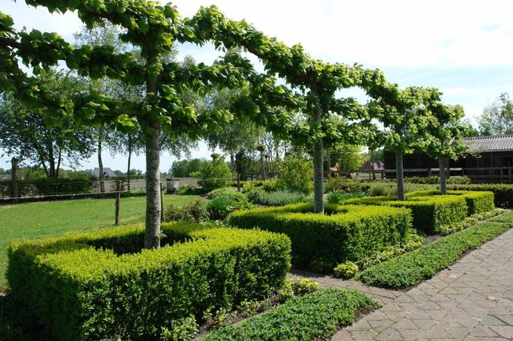 17 best images about tuin statig herenhuis on pinterest gardens ramen and chelsea flower show - Geplaveid voor allee tuin ...