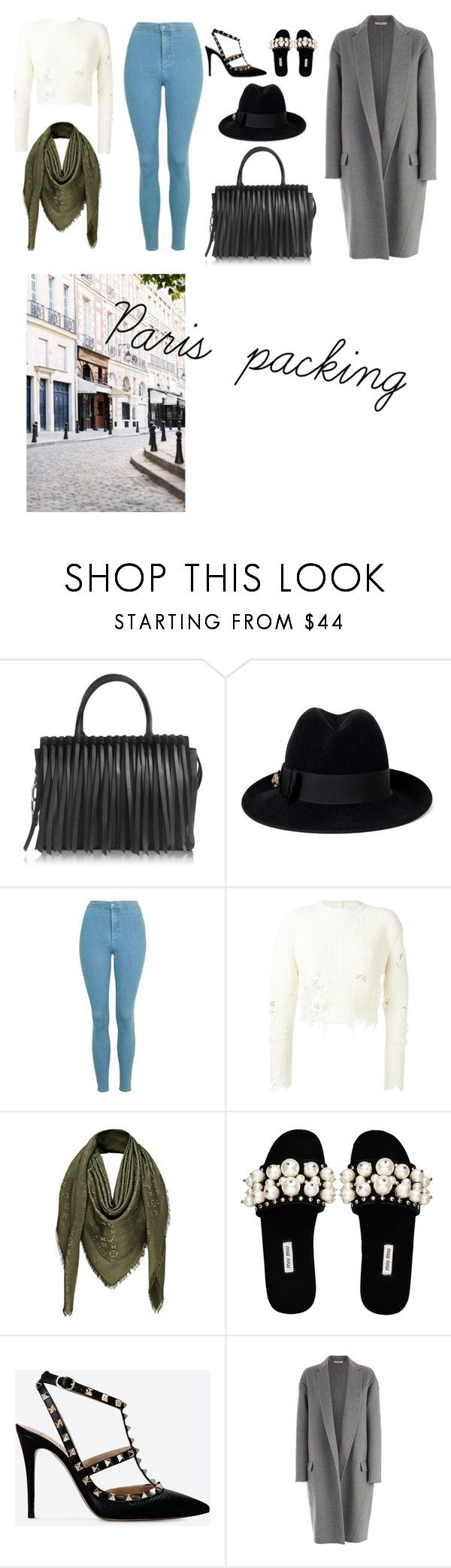"""""""Paris packing"""" by avahuszar ❤ liked on Polyvore featuring Alexander Wang, Gucci, Topshop, adidas Originals, Louis Vuitton, Miu Miu, Valentino, CÉLINE and Dauphine"""