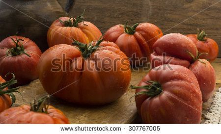 Freshly pick tomatoes, place on wooden chopping board and table. High resolution image.