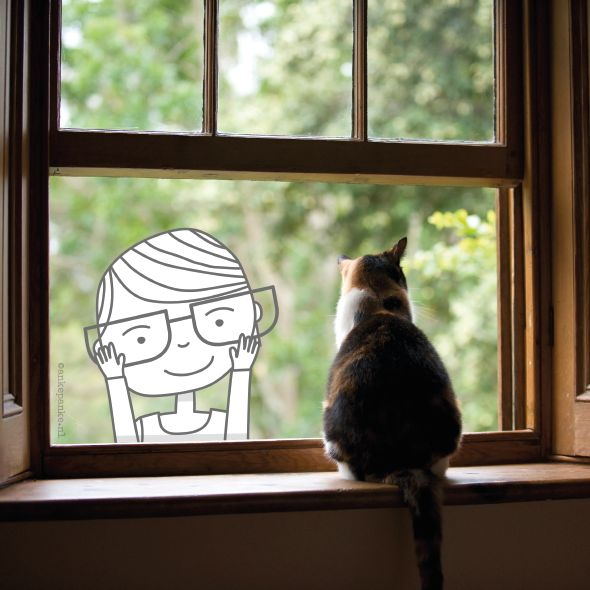 Whenever I see a cat in a window, I want to..