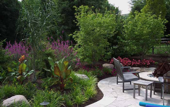 Residential Landscaping Plants : Trees and plants by the pool rosehill gardens kansas