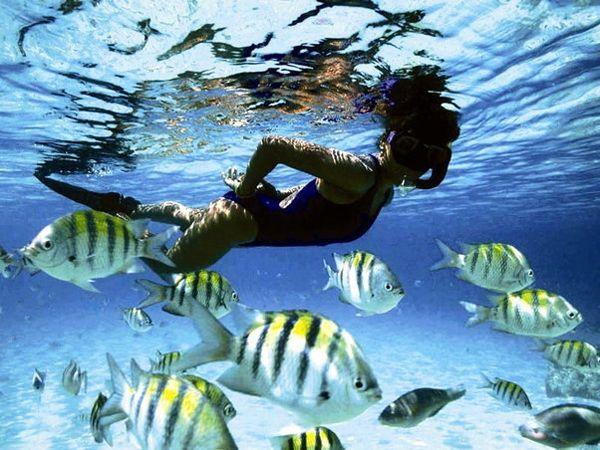 Барбадос: солнце, пляжи и морепродукты — http://topclub.ua/blog/news/barbados-solnce-plyazhi-i-moreprodukty
