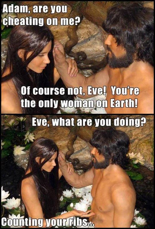Adam are you cheating on me?  http://cheesypeasy.com/2014/07/09/adam-cheating/  #humor #adamandeve #lol #lmao #funnypics