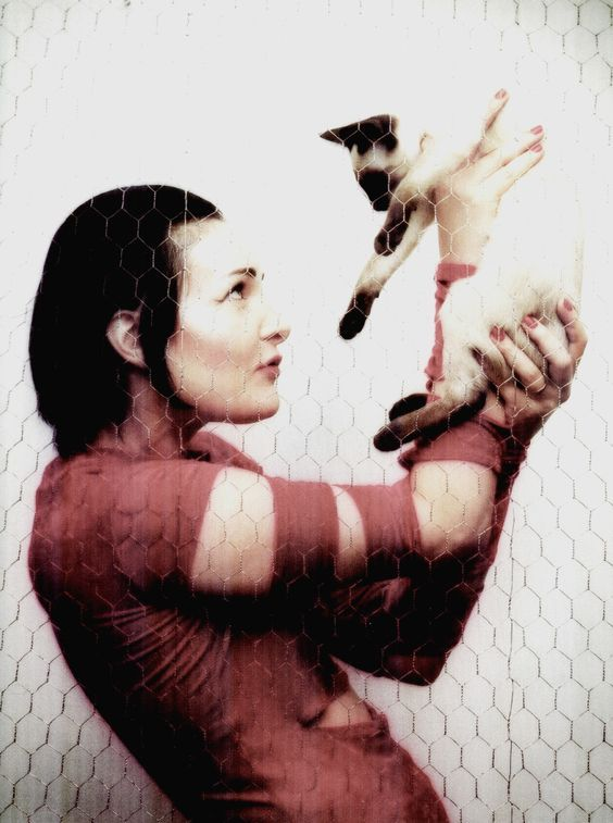 17 Best Images About Celebrities And Their Siamese On