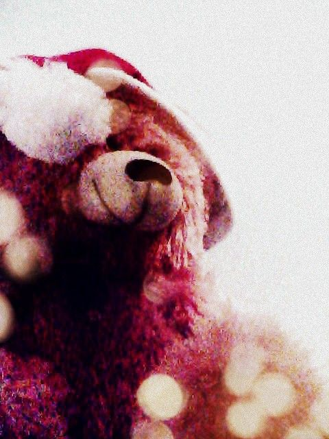 My Christmas teddy bear