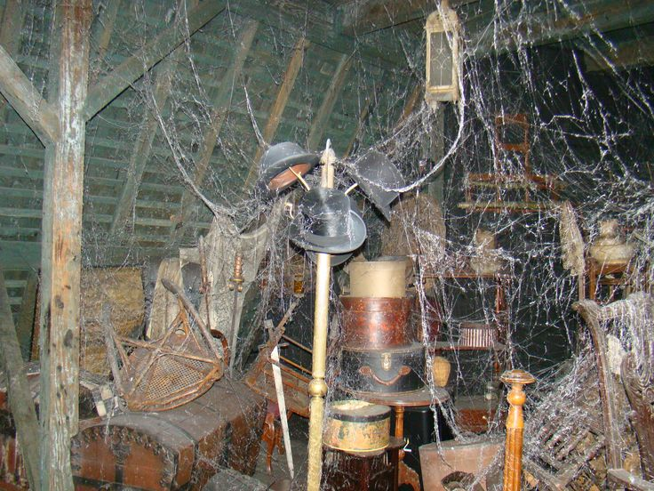 Yes, I would fight my way through these old spider webs. However,  I have been in my share of old places, and actually it seems like an extraordinary amount of spider webs. Maybe I'd hire an exterminator after all.