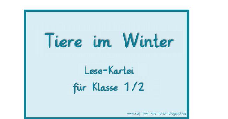 Tiere im Winter-Kartei Klasse 1.pdf