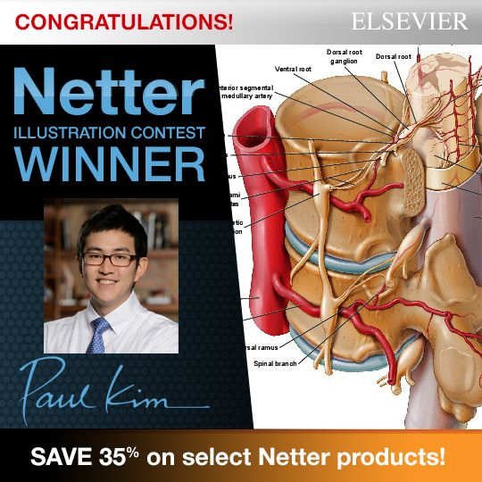 12 best netter publications images on pinterest anatomy anatomy congratulations to our netter images illustration contest winner paul kim click this image to fandeluxe Images