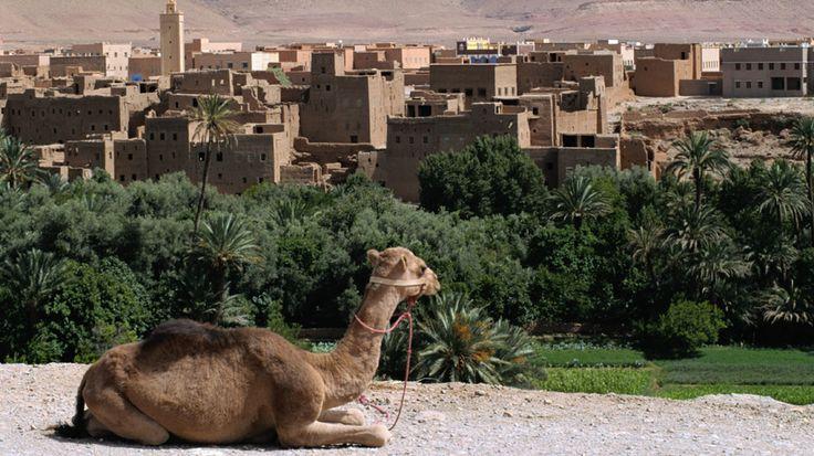 Kiertomatka alkaa Atlantin rannalta Agadirista. Matkalla tutustutaan värikkään Marrakechin kaupungin upeimpiin nähtävyyksiin, ihastellaan huikeita Atlas-vuoriston maisemia ja seurataan vanhaa karavaanireittiä, jonka varrella on vielä jäljellä perinteisiä kasbah-linnoituksia. Agadir 1 yö – Marrakech 1 yö – Ouarzazate 1 yö – Erfoud 1 yö – Ouarzazate 1 yö – Agadir 2 yötä. #Marokko #kiertomatkat #aurinkomatkat #Agadir #matka
