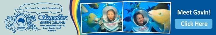 Great Barrier Reef Tour with Seawalker @ Green Island Australia
