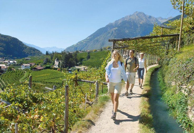 Algunder Waalweg - Südtirol Urlaub in Schenna