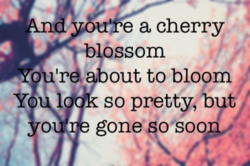Best Fall Out Boy Quotes. QuotesGram