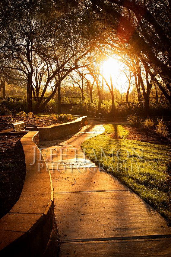 Sunrise in a park in Regina, Saskatchewan. By Jeff Hamon Photography www.jeffhamonphotography.ca