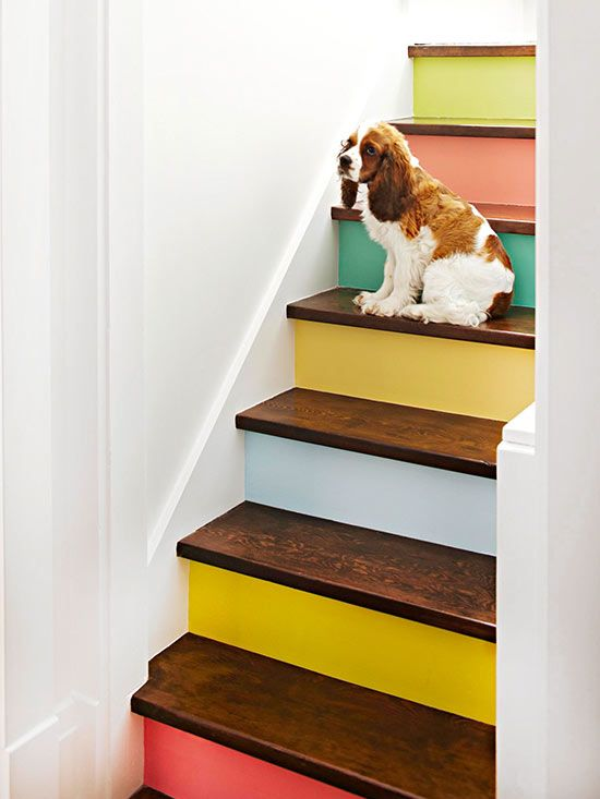 Painted Staircase Risers. I wonder if I could do removable wall paper on the stairs in my apt, so I can remove them when we move out??