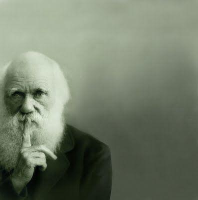 Charles Darwin es sin duda alguna una de las personas que más han representado para el avance de la ciencia en la historia de la Humanidad, sus estudios sobre la Evolución y sobre todo, el descubrimiento de la Selección Natural, marcó el nuevo rumbo de la Biología.