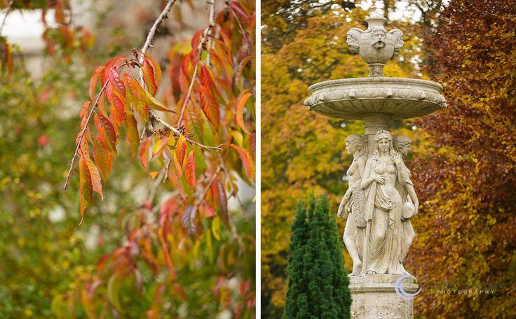 Around the grounds at Finnstown in Autumn