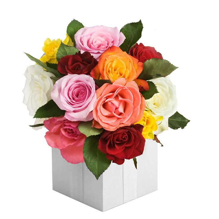 "We are pleased to announce to the friends and supporters of Times Flora the release of 6 new flowers arrangements. They will be available for ordering from next monday 2013-12-9. Here is the first glance our new product ""HULDA""!  Order Before 2pm for Same Day Delivery! View More at: http://www.timesflora.com/ For More Promotion, Please like our facebook at: http://www.facebook.com/timesflora  #Timesflora #Flowers #Australia #Online #Delivery #Friday #Roses #HULDA"