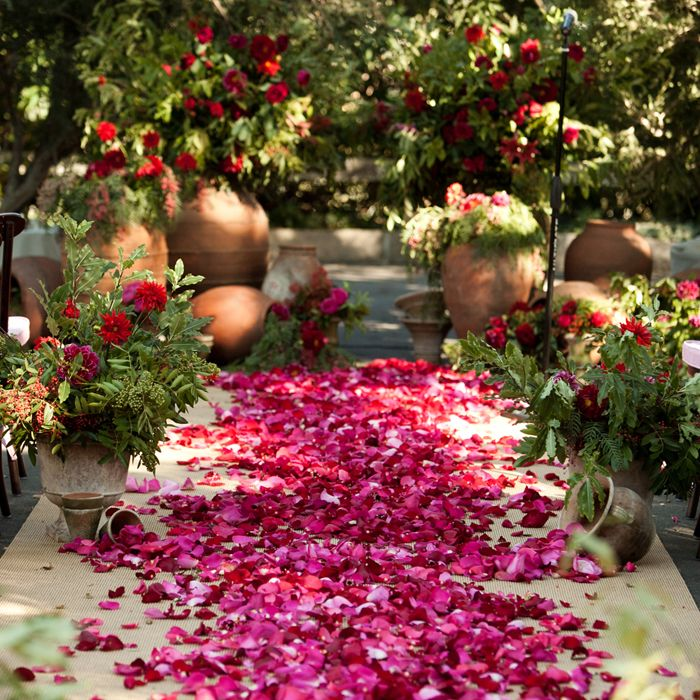 Fuchsia Flower Petals Lined This Ceremony Aisle