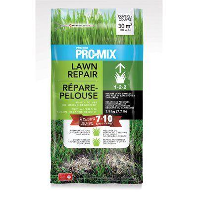 PRO-MIX 7.8-lbs Ryegrass Lawn Repair Mix