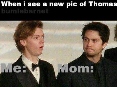 Wait which Thomas like Thomas Brodie Sangster, Newt, Dylan O'Brien or Thomas who knows