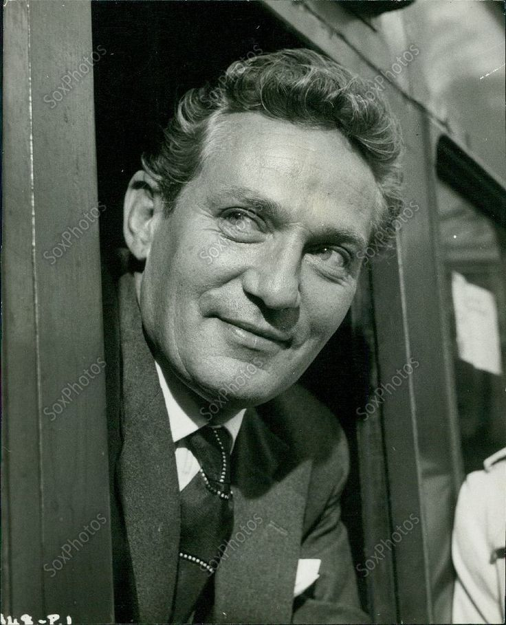 238 best images about Peter Finch on Pinterest   Press ...