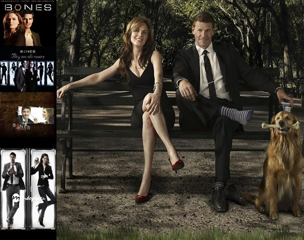 Bones: Music, Favorite Tv, Booth And Brennan, Movies, Tv Series, Bones Booth, Bones Tv, Photo, David Boreanaz