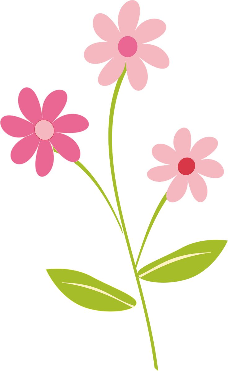 Here You Can See The Cute Flowers Clipart Png Collection Use These For Your Documents Web Sites Art Projects Or