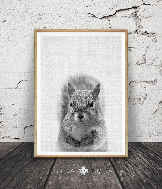 Cute Squirrel Wall Art Print, Black White And Grey Nursery Decor, Modern  Minimalist Printable
