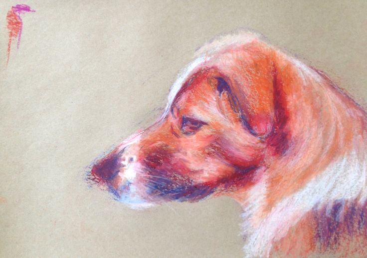 Sarah. Stray dog 2. A3 size oil pastel drawing. Dog portrait.