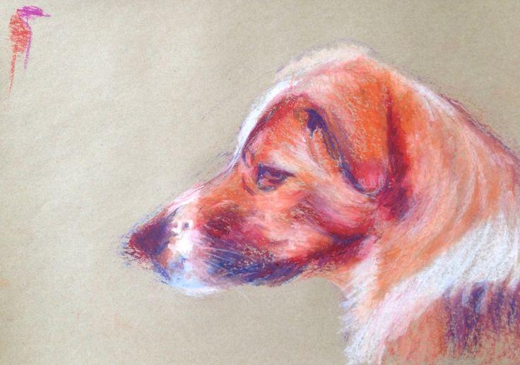 Sarah. Stray dog 2. A3 size oil pastel drawing. Dog portrait.